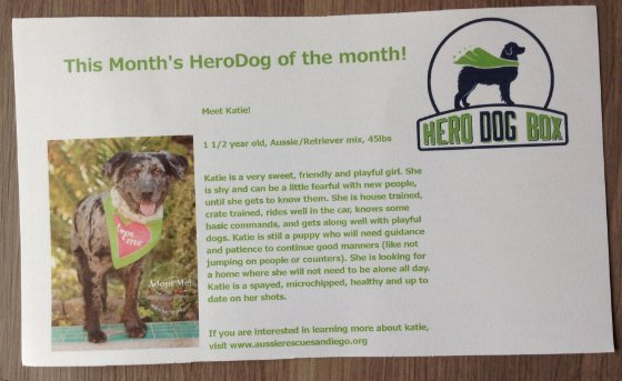 Hero Dog Box Subscription Review - July 2014 Card
