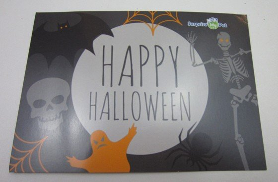 Surprise My Pet Subscription Box Review October 2015 - card1