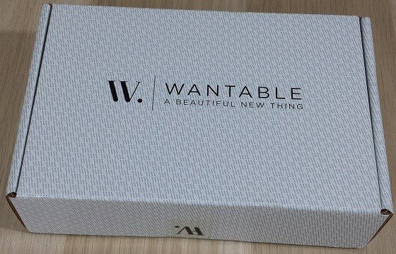 Wantable Accessories Subscription Box Review December 2015 - box