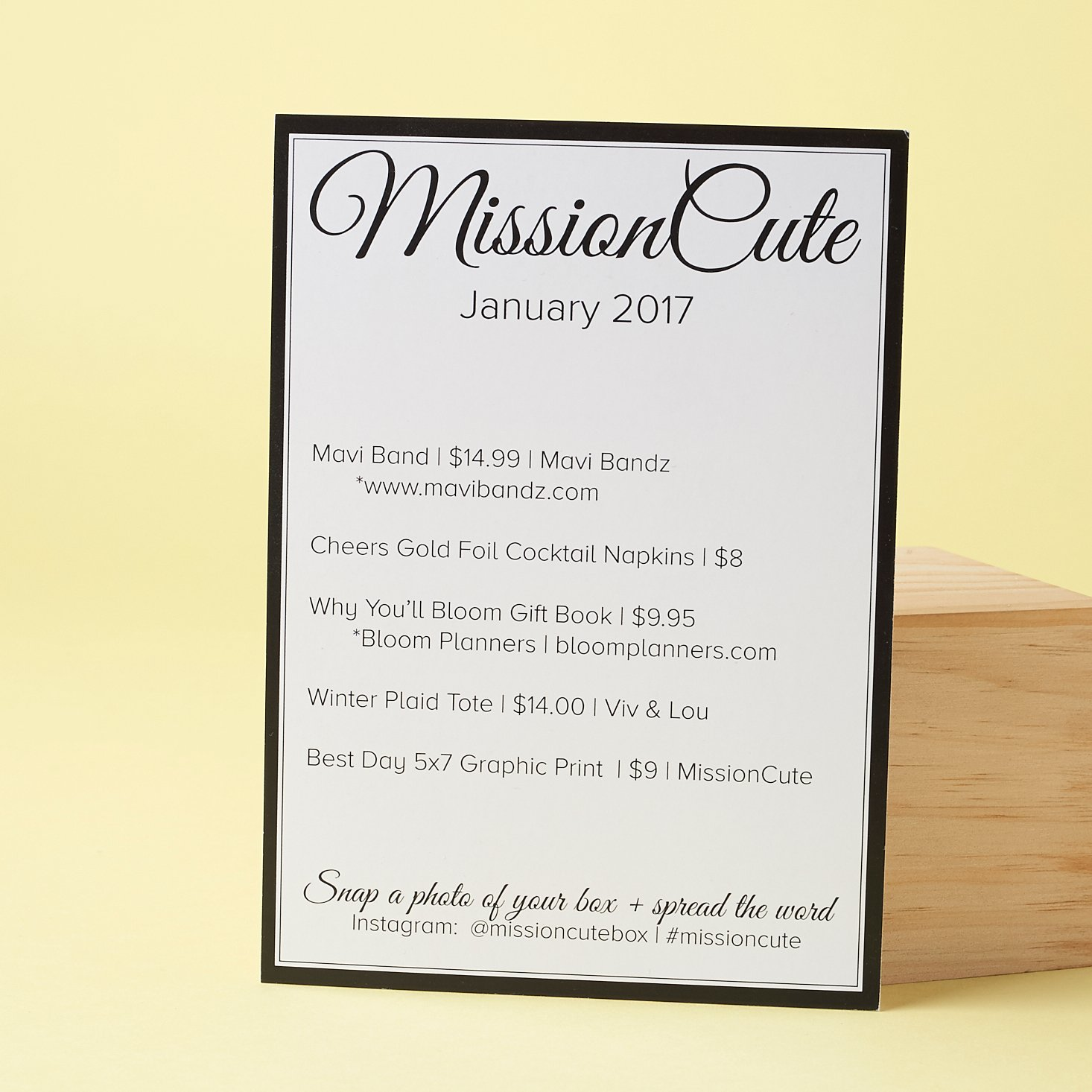 Check out what's inside the January 2017 Mission Cute box!