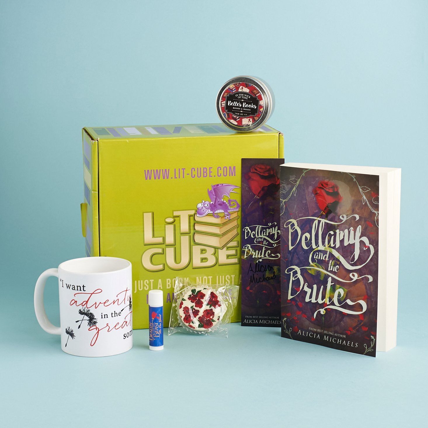 Check out our review of the March 2017 LitCube box!