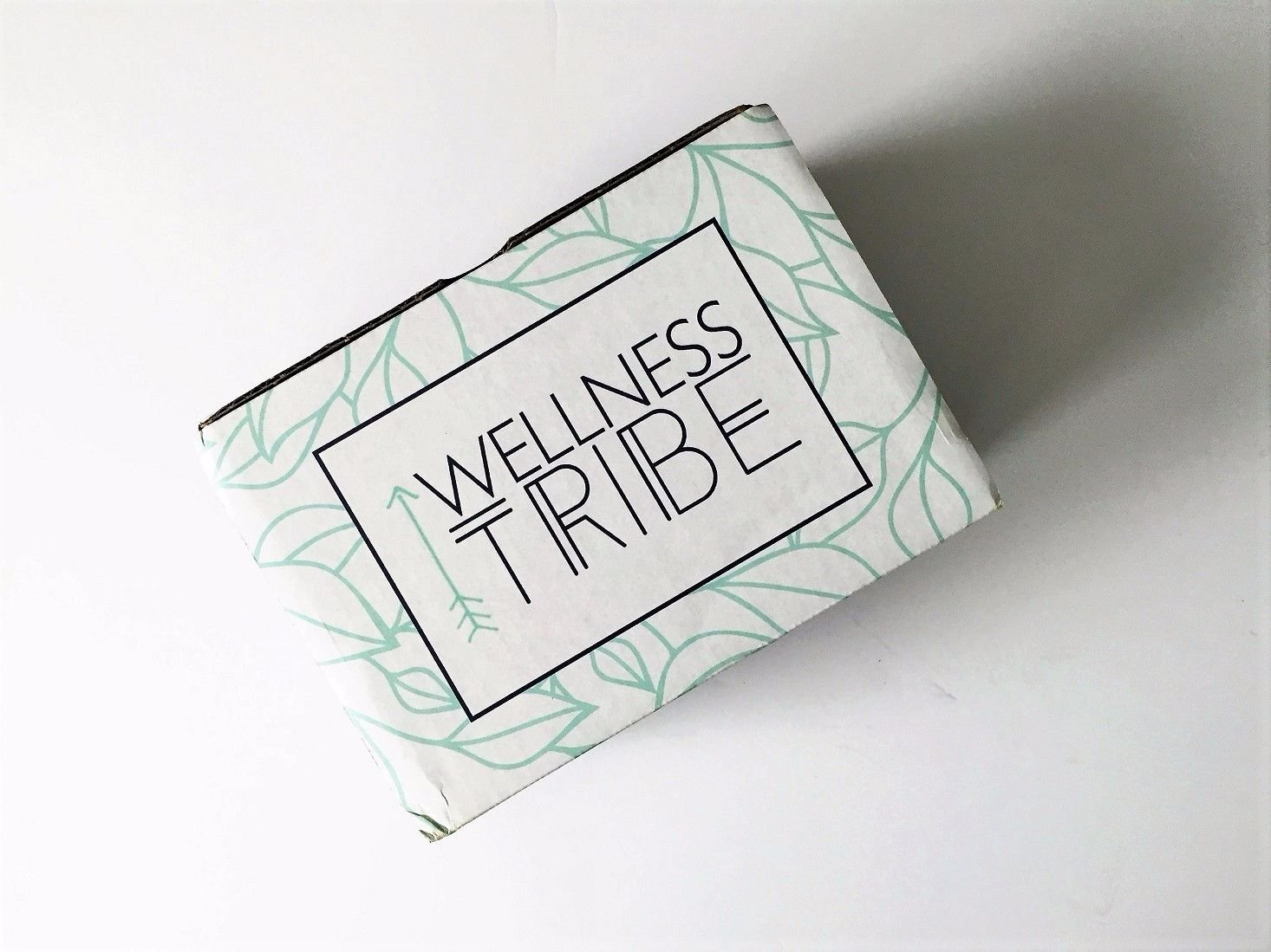 WELLNESS-TRIBE-April -2017-01closedbox.jpg