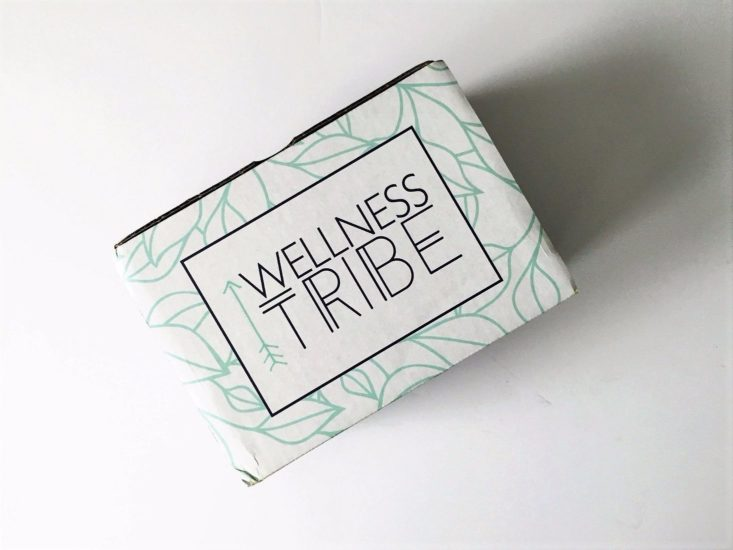 Wellness Tribe Energy June 2017