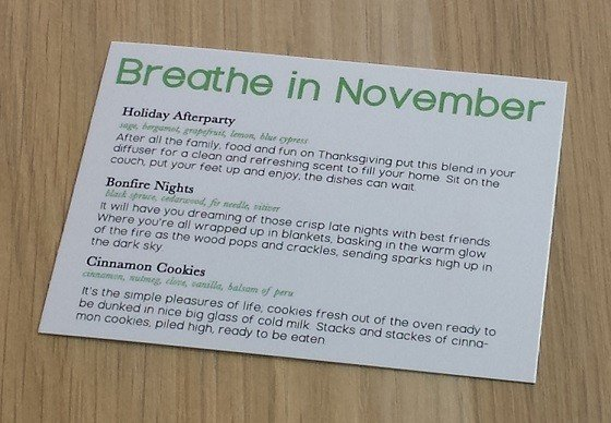 Breathe In Box Subscription Box Review November 2015 - info