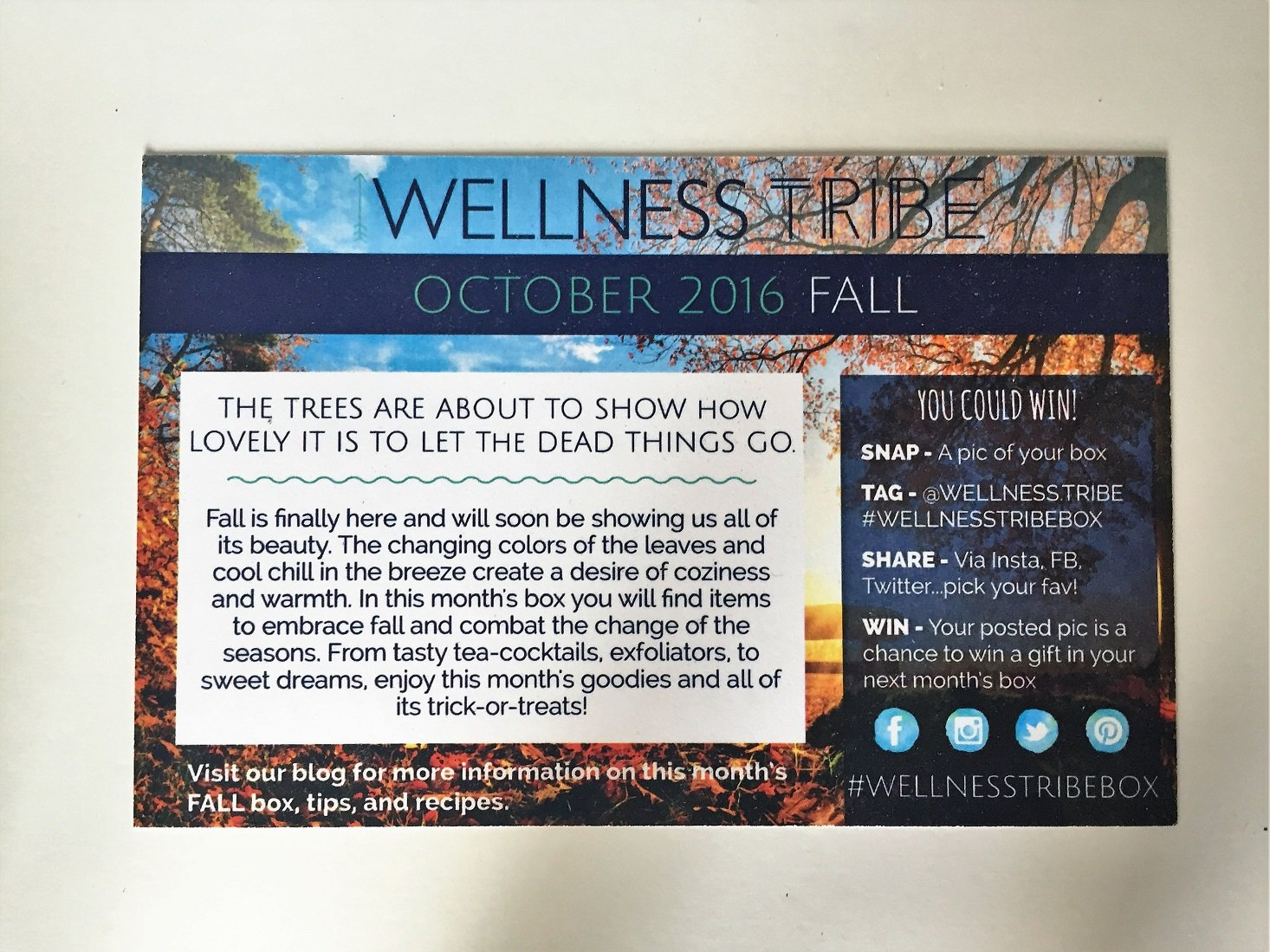 wellness-tribe-october-2016-04frontcard