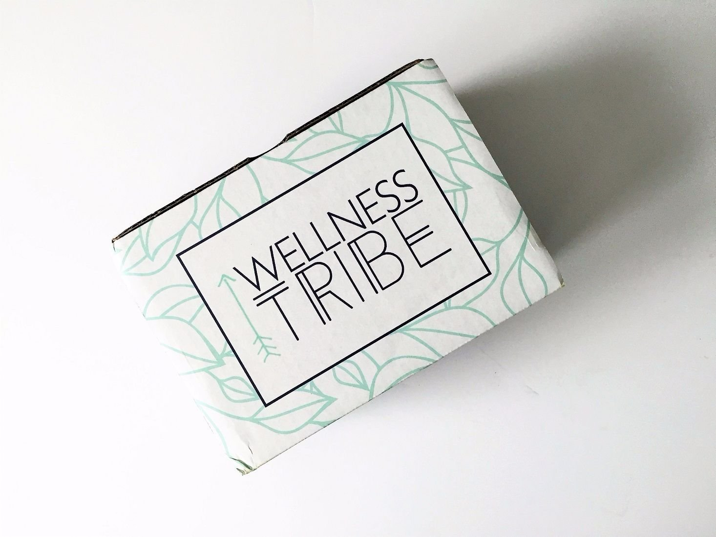 wellness-tribe-november-2016-01closedbox-jpg
