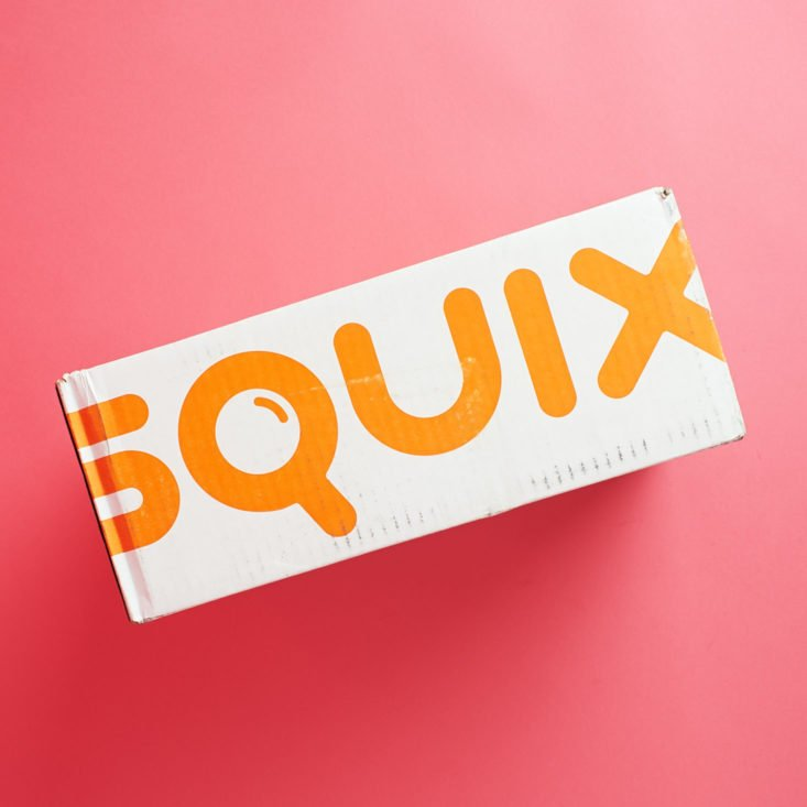 See the household supplies inside the October Squix Introductory subscription box!