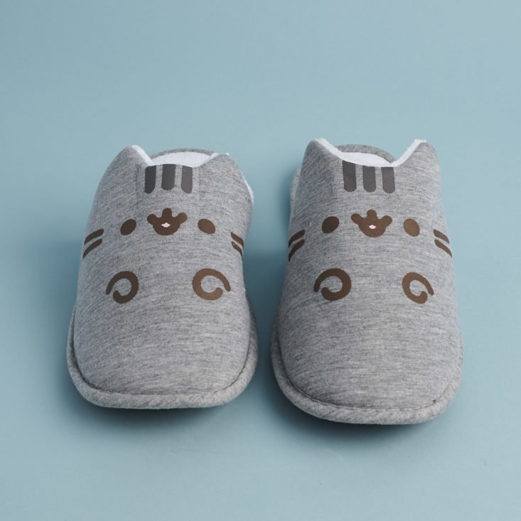 front of Pusheen Slippers