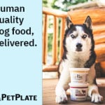 Today Only! PetPlate Coupon – Save 65% Off Your First Box!