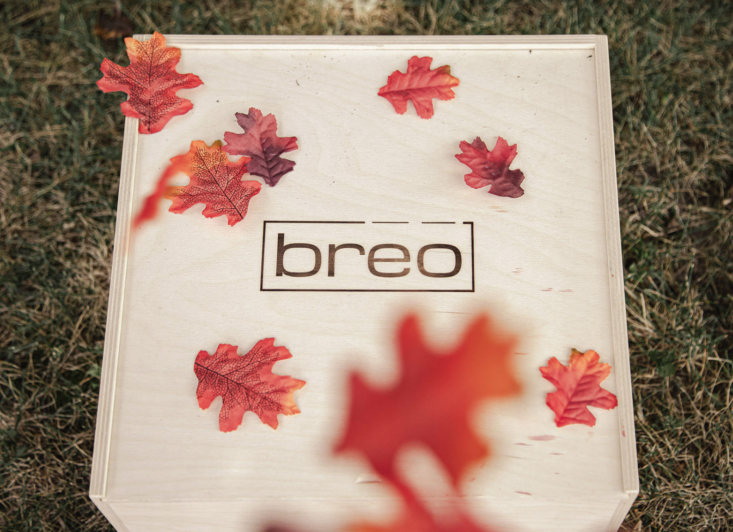 Breo Box Fall 2019 Spoiler