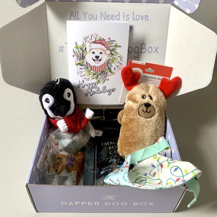 The Dapper Dog box propped open to display holiday dog toys, a bandana, and treats.